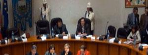 Consiglio Comunale del 14 dicembre 2011