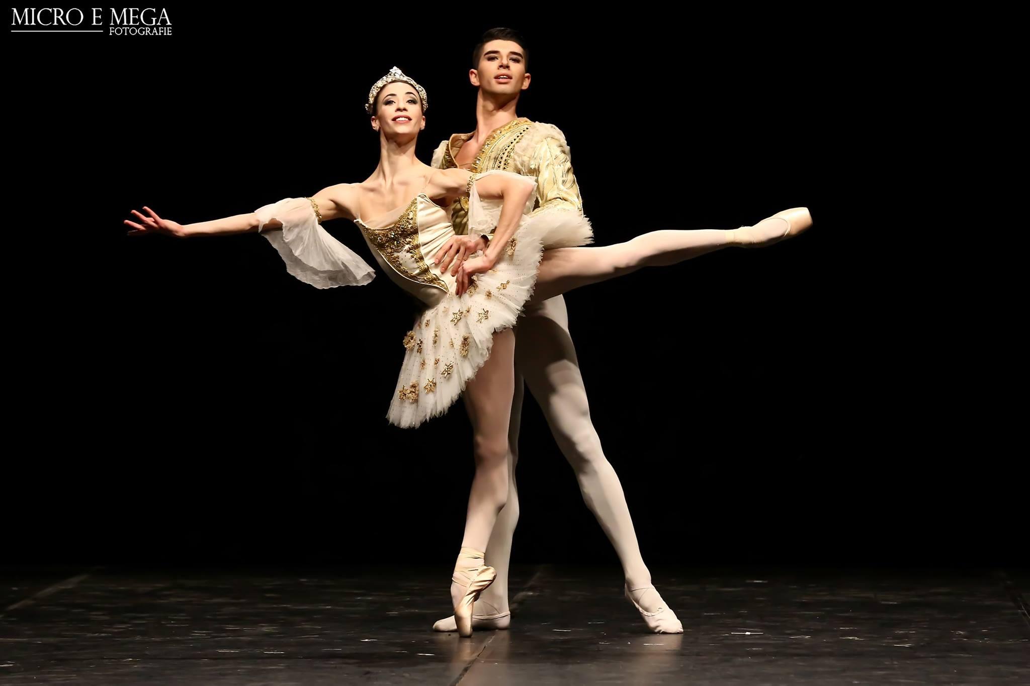 i ballerini del teatro dell\'opera di roma