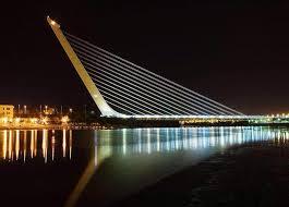 ponte Calatrava notturno