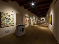 bocs museum