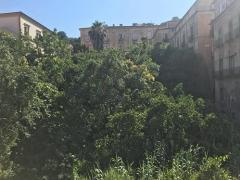Giardino Passalacqua abbandonato Centro storico
